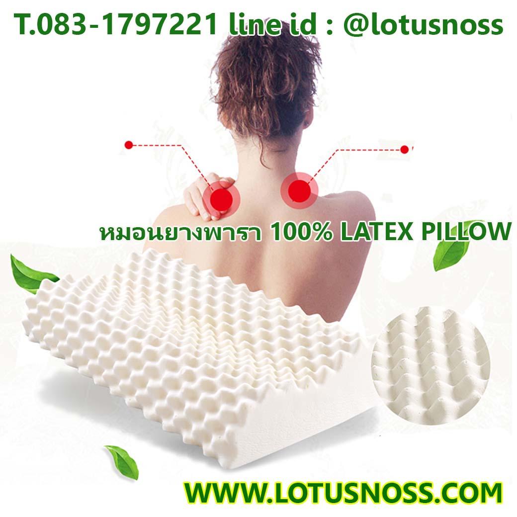 หมอนยางพาราแท้สุขภาพแบบมีปุ่มนวด CONTOUR KNOBBY PILLOW LATEX - พร้อมส่งLA003 ราคา1300บาท